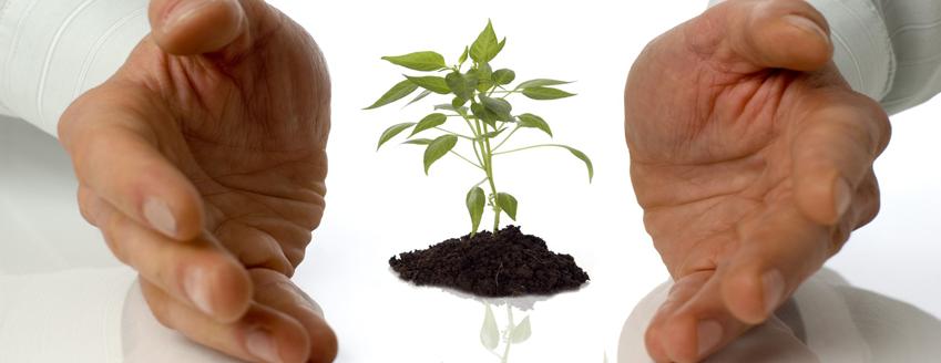 How to nurture good culture, part 2
