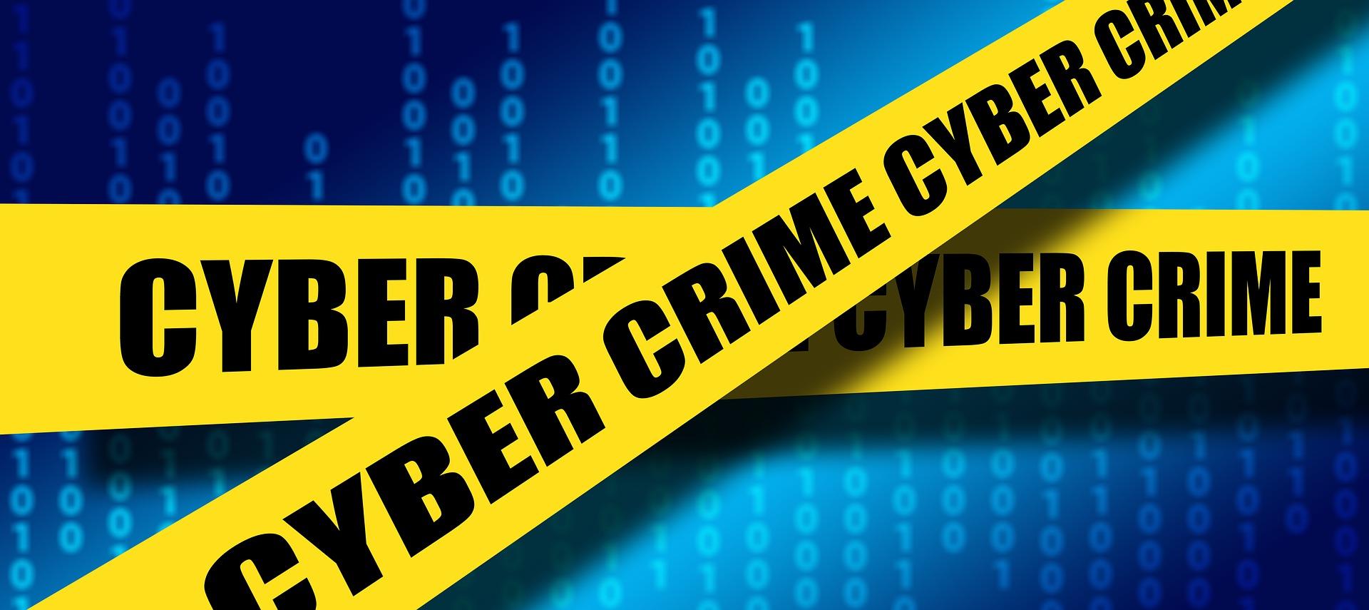 Cybercrime: Are you a CEO or CFO?